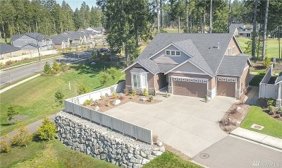 Lacey Single Family Home For Sale: 4348 Abigail Dr NE