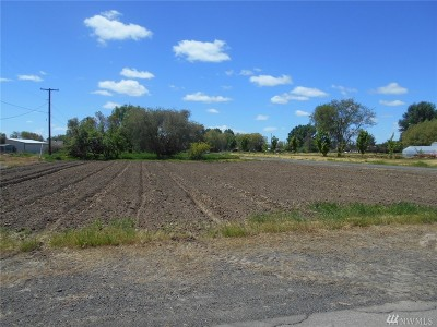Residential Lots & Land For Sale: 310 E Elm Ave