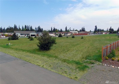 Residential Lots & Land For Sale: 9999 Bolster Wy