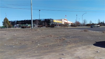 Residential Lots & Land For Sale: 1008 W Charlotte St