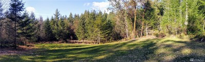 Residential Lots & Land For Sale: Bandix Rd SE