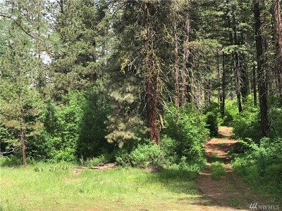 Residential Lots & Land For Sale: 13555 Chumstick Hwy