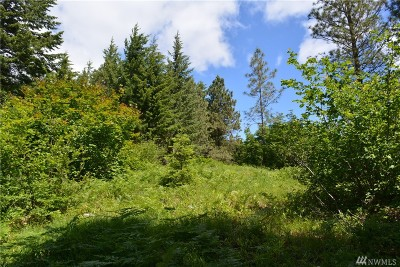 Residential Lots & Land For Sale: 711 Ruby King Lp