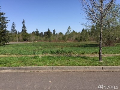 Residential Lots & Land For Sale: 116 Sycamore Lane