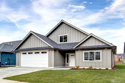 Lynden Single Family Home Contingent: 2019 Feather Dr