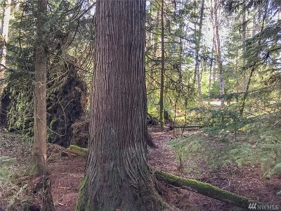 Residential Lots & Land For Sale: 211 E Willapa Rd