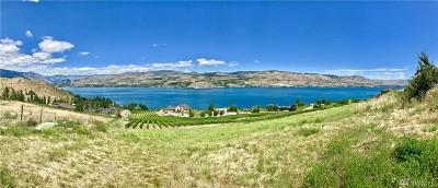 Chelan, Chelan Falls, Entiat, Manson, Brewster, Bridgeport, Orondo Residential Lots & Land For Sale: 313 Clos Chevalle Rd