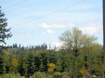 Residential Lots & Land For Sale: 175 Blue Rd