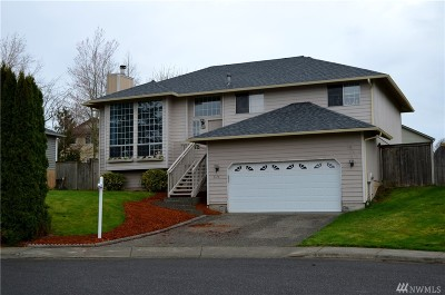 Ferndale Single Family Home For Sale: 6179 Evergreen Wy