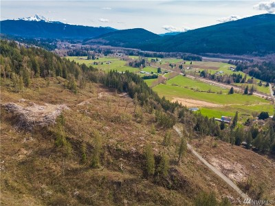 Everson Residential Lots & Land For Sale: 5500 Hillard Rd