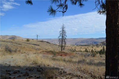 Chelan, Chelan Falls, Entiat, Manson, Brewster, Bridgeport, Orondo Residential Lots & Land For Sale: 1784 Washington Creek Rd
