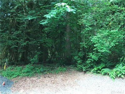 Glacier WA Residential Lots & Land For Sale: $35,000