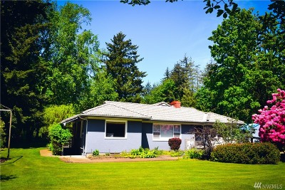 Single Family Home For Sale: 786 Birch Bay Lynden Road