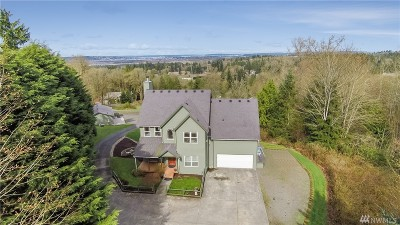 Snohomish Single Family Home For Sale: 3933 Tom Marks Rd