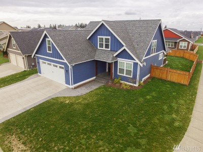 Lynden Single Family Home For Sale: 2173 Shea St