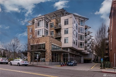 Condo/Townhouse Sold: 211 Kirkland Ave #223