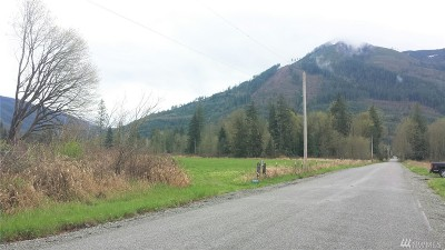 Sedro Woolley Residential Lots & Land For Sale: 40 Potts Rd