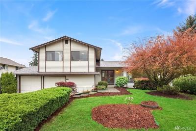 Kirkland Single Family Home For Sale: 13208 111th Ave NE