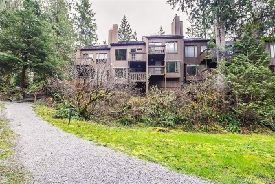 Glacier Condo/Townhouse Sold: 10500 Mt Baker Hwy #1011