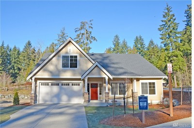 Gig Harbor Single Family Home For Sale: 9431 Ancich Ct
