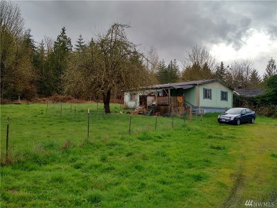 Chehalis Single Family Home For Sale: 3810 Jackson Hwy