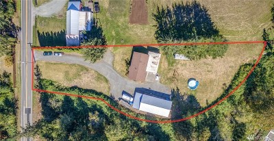 Ferndale Commercial For Sale: 5114 Labounty Rd