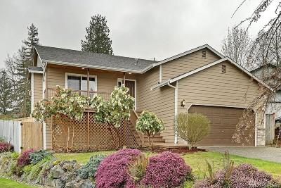 Lake Stevens Single Family Home For Sale: 9201 15th St NE