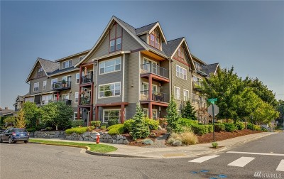 Bellingham Condo/Townhouse Sold: 1000 High St #302