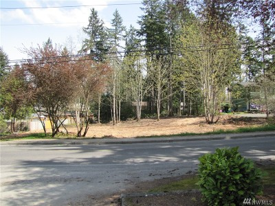 Bonney Lake Residential Lots & Land For Sale: 8204 Locust Ave E