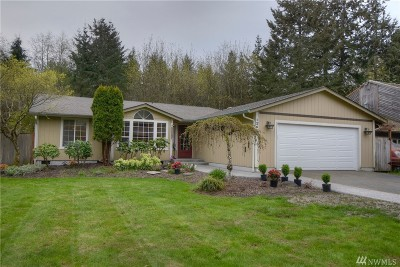 Single Family Home For Sale: 12621 Champion Dr