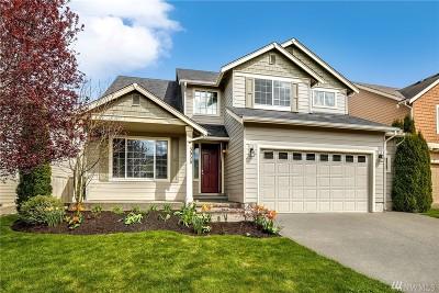 Thurston County Single Family Home For Sale: 3920 Rossberg St SE