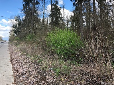 Residential Lots & Land For Sale: 4206 176th St E