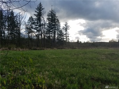 Residential Lots & Land For Sale: 11251 Rush Rd