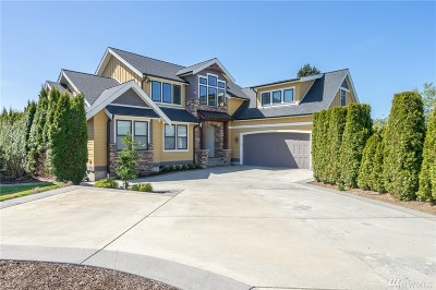 Whatcom County Single Family Home For Sale: 853 Captain Bay Ct