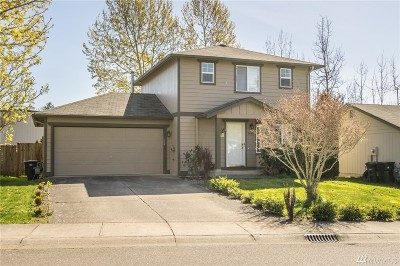Bellingham Single Family Home For Sale: 1468 Fruitland Dr
