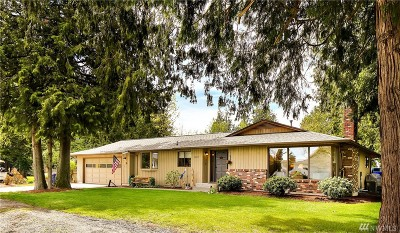 Lynden Single Family Home For Sale: 8619 Bonanza Dr