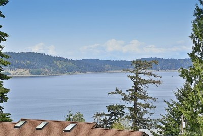 Langley Single Family Home For Sale: 3239 Fox Spit Rd
