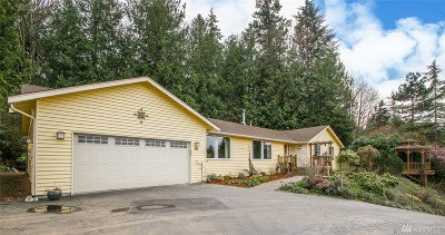 Skagit County Single Family Home For Sale: 918 Nez Perce Dr