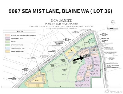 Blaine Residential Lots & Land For Sale: 9087 Sea Mist Lane