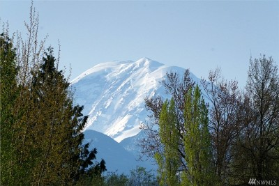 Enumclaw Residential Lots & Land For Sale: 247 SE 448th St