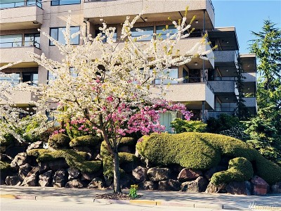 Seattle Condo/Townhouse For Sale: 8501 12th Ave NW #102
