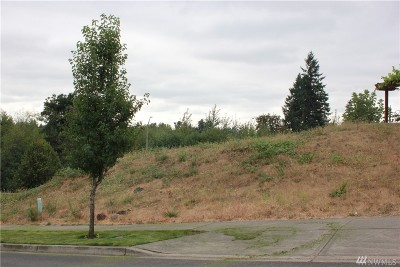 Residential Lots & Land For Sale: 1853 Galenta Dr SW