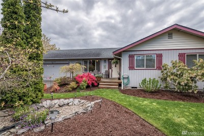 Blaine Single Family Home For Sale: 8238 Snohomish Rd