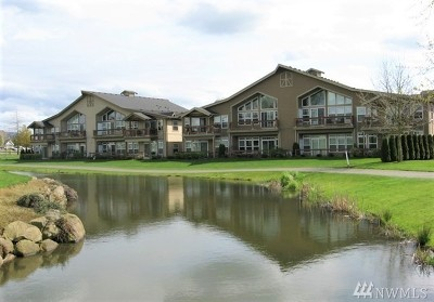 Lynden Condo/Townhouse Sold: 324 Homestead Blvd #102
