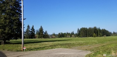 Grays Harbor County Residential Lots & Land For Sale: 20 Bear Rd