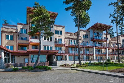 Birch Bay Condo/Townhouse Sold: 7714 Birch Bay Dr #308