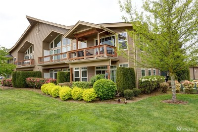 Lynden Condo/Townhouse Sold: 300 Homestead Blvd #101