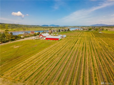 Skagit County Farm For Sale: 15275 Channel Dr