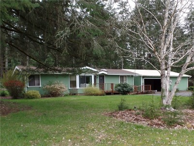 Chehalis Single Family Home For Sale: 243 Haight Rd