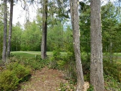 Residential Lots & Land For Sale: 120 N Handicap Place
